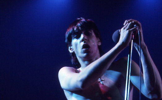 Iggy Pop, at a Montreal concert in 1973. Photo by Jean-Luc Ourlin.
